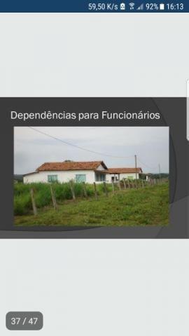 Fazenda no Maranhão 6.725 em Balsas