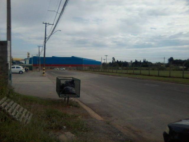 Área para alugar, 5.000 m² a 30.000 m² por r$ 1,00 m² - zona de produção industrial 01 - n - Foto 5