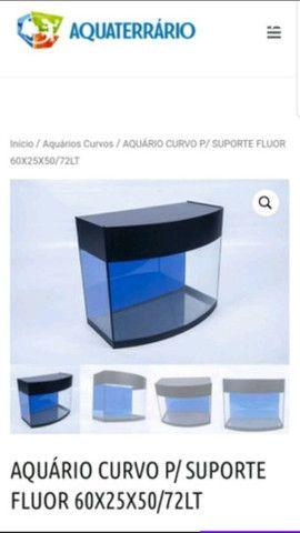 Aquário Curvo Aquaterrário para Peixes com Suporte Transparente 72L - Foto 2