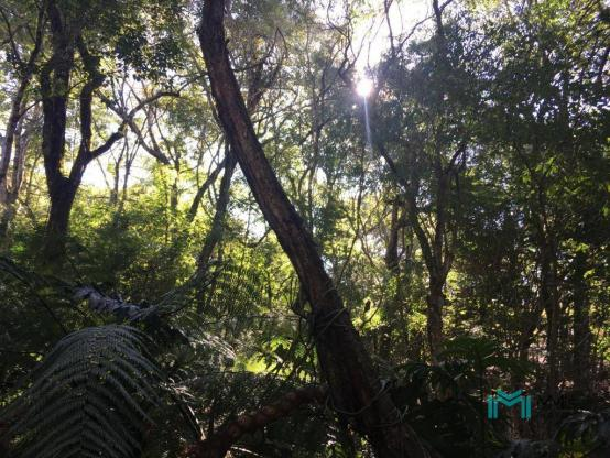 Chácara para Lazer em Santa Tereza ao lado Parque Nacional - Foto 20
