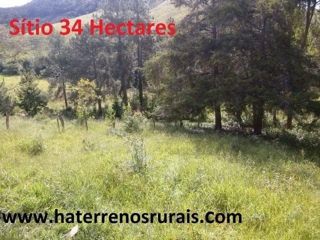 Sítio 34 hectares - Foto 11
