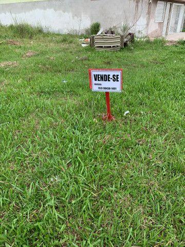 Barbada Terreno em  Pelotas somente essa semana  (sítio Floresta)escriturado  - Foto 4