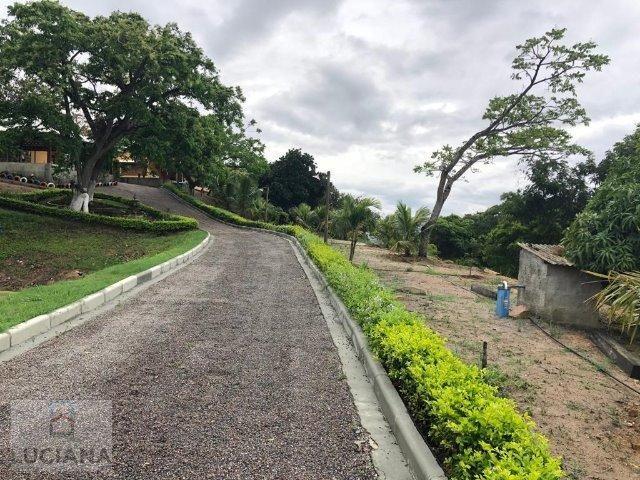 Propriedade em Mandacarú (Cód.: 31da83) - Foto 19