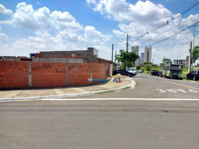 Terreno para alugar, 450 m² por R$ 1.200,00/mês - Jardim Nova Alvorada - Hortolândia/SP - Foto 5