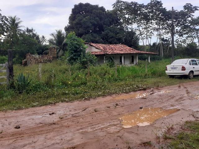 Vendo fazenda em Monte gordo - Foto 8