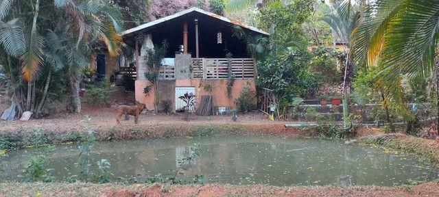 Chácara dentro de Goiânia de 33.696 m² - Foto 4