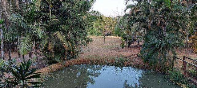 Chácara dentro de Goiânia de 33.696 m² - Foto 12
