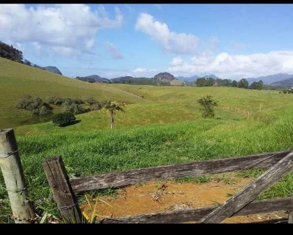 Fazenda em Santa Rosa, Região de Aracruz- Bia Araújo - Foto 3