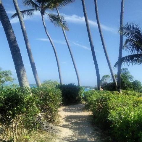 Oportunidade uma casa na ilha de Boipeba BA