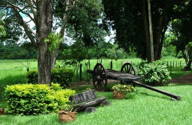 Fazenda 700 Alqueires - Região de Presidente Prudente-SP - Foto 16