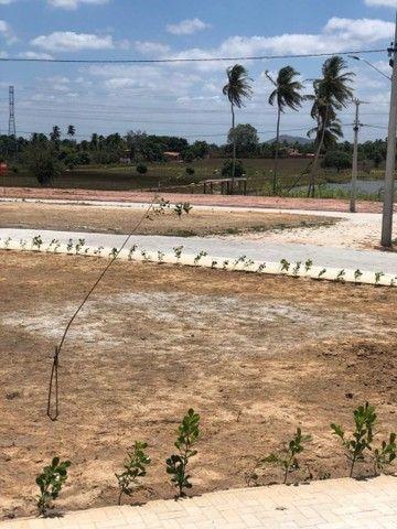 LOTES PARA CONSTRUÇÃO IMEDIATA AS MARGENS DA AV. PRINCIPAL COM PARCELAS DE 179  - Foto 10