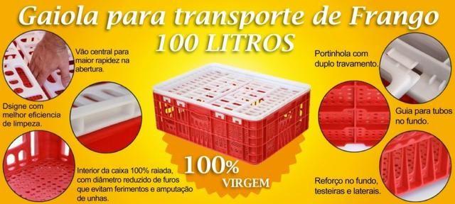 Gaiola para transporte de frango vivo 100L