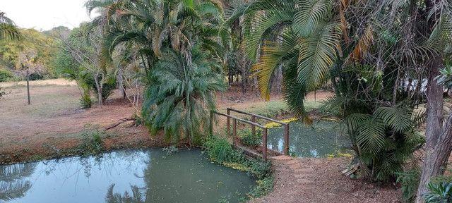 Chácara dentro de Goiânia de 33.696 m² - Foto 18