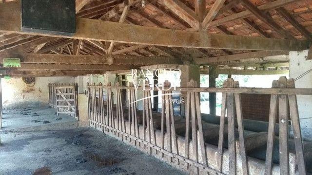 Fazenda em Aparecida - Cód 2275 - Foto 18