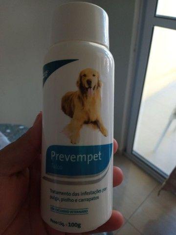 Promoção tudo pro seu pet  - Foto 4
