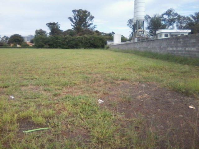 Área para alugar, 5.000 m² a 30.000 m² por r$ 1,00 m² - zona de produção industrial 01 - n - Foto 6