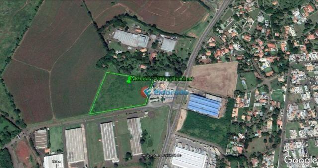 Área para alugar, 5.000 m² a 30.000 m² por r$ 1,00 m² - zona de produção industrial 01 - n - Foto 3