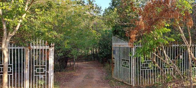 Chácara dentro de Goiânia de 33.696 m² - Foto 2