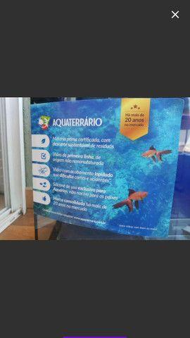 Aquário Curvo Aquaterrário para Peixes com Suporte Transparente 72L