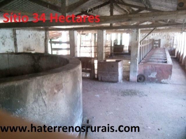 Sítio 34 hectares - Foto 3