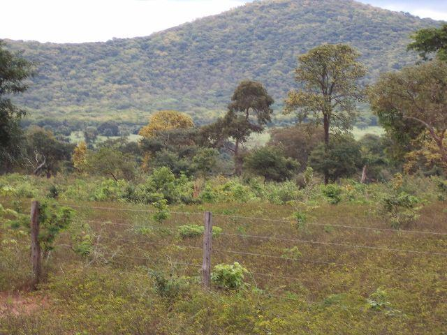 109 Hectares - Montes Claaros
