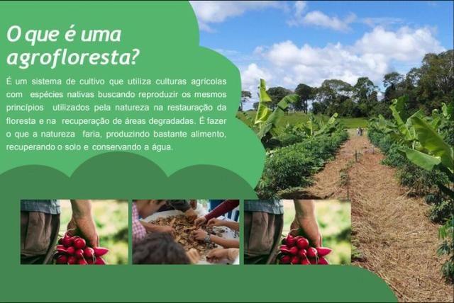 Lançamento Condomínio Florata !! - Foto 12