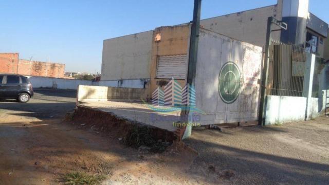 Terreno comercial para locação, Vila Real, Hortolândia - TE0078. - Foto 10