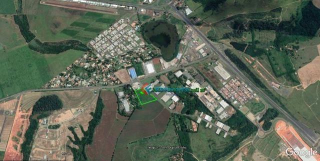Área para alugar, 5.000 m² a 30.000 m² por r$ 1,00 m² - zona de produção industrial 01 - n - Foto 4