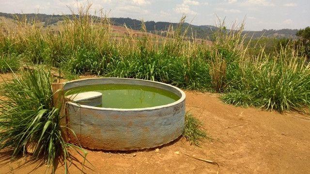 Fazenda 80 ha em Para de Minas/MG - Foto 19