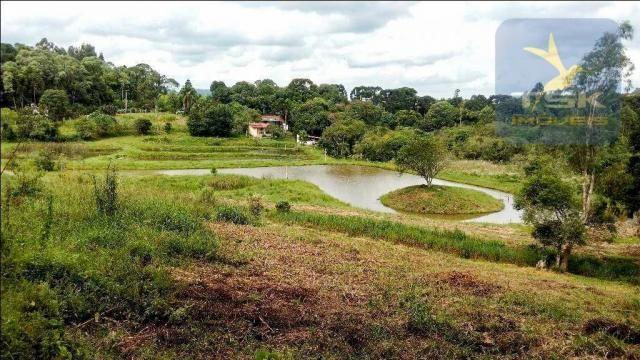 CH0266 - Chácara, 68.000 m² à venda por R$430.000. Agudos do Sul/PR. - Foto 2