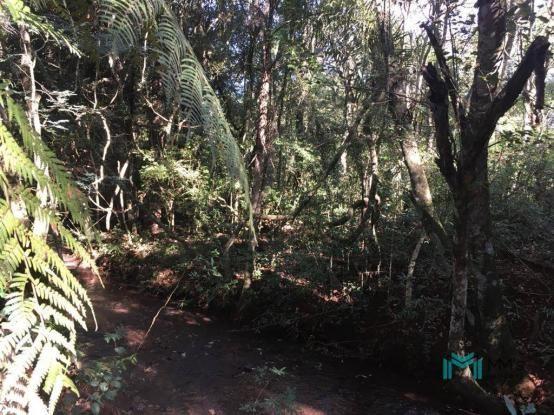Chácara para Lazer em Santa Tereza ao lado Parque Nacional - Foto 13