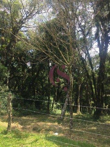 Terreno à venda no Jardim Mariana em Canela/RS - Foto 2