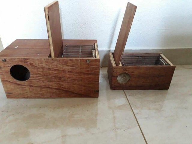 2 caixas de ninho por R$ 65,00 - Foto 5