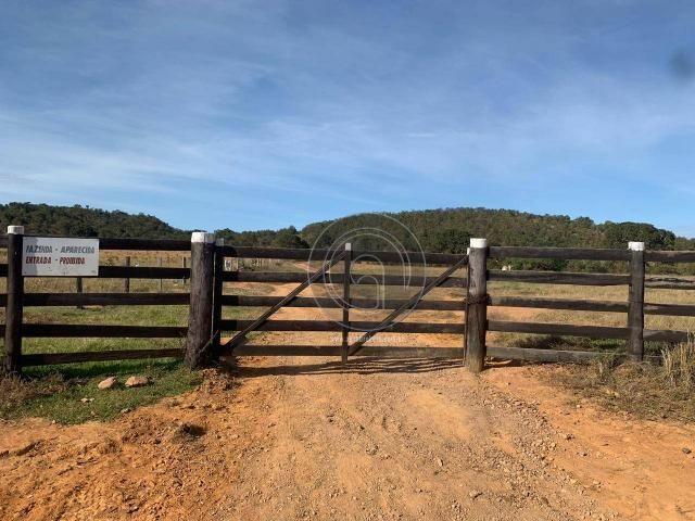 Fazenda 1.050ha região rosario oeste (cedral) - Foto 2