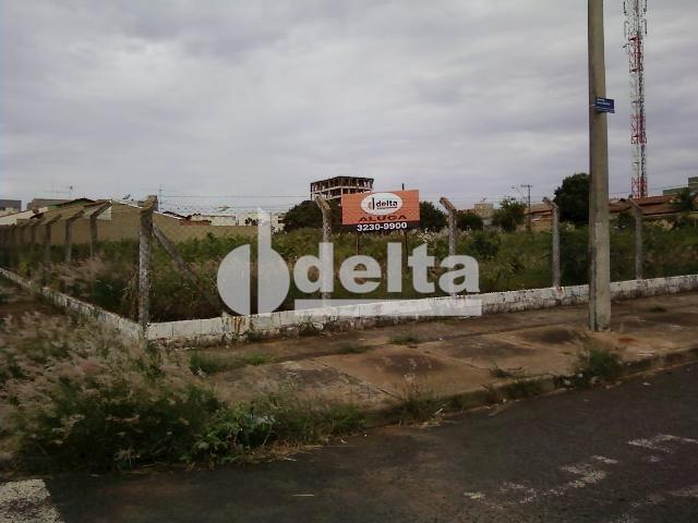 Terreno para alugar em Segismundo pereira, Uberlândia cod:221457