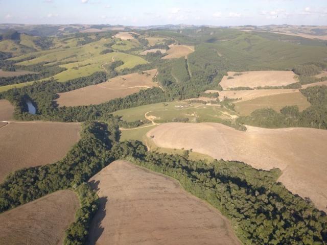 Vendo fazenda 350 alqueires em arapoti-pr - Foto 16