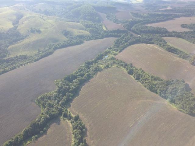 Vendo fazenda 350 alqueires em arapoti-pr - Foto 12