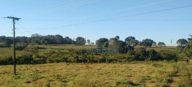 Área à venda, 290400 m² por R$ 1.200.000,00 - Zona Rural - Nazario/GO - Foto 2