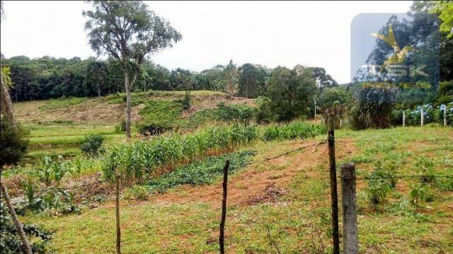 CH0266 - Chácara, 68.000 m² à venda por R$430.000. Agudos do Sul/PR. - Foto 7