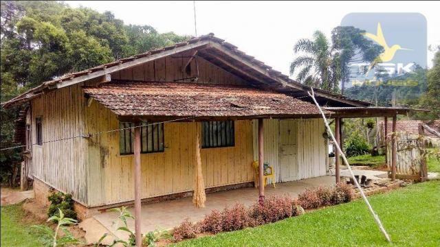 CH0266 - Chácara, 68.000 m² à venda por R$430.000. Agudos do Sul/PR. - Foto 10