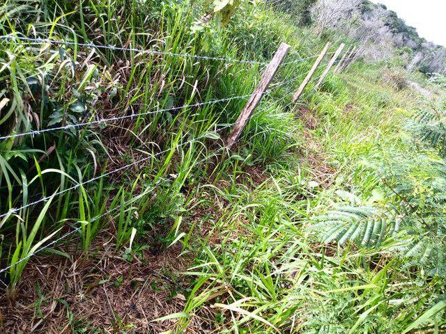 Arrendamento - Fazenda com 82 ha, Una-BA - Foto 16