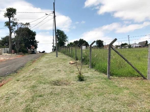 Terreno à venda com 2 dormitórios em Shangrila, Ponta grossa cod:854 - Foto 4