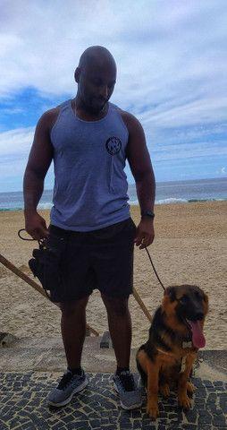 Adestramento Canino - Foto 3