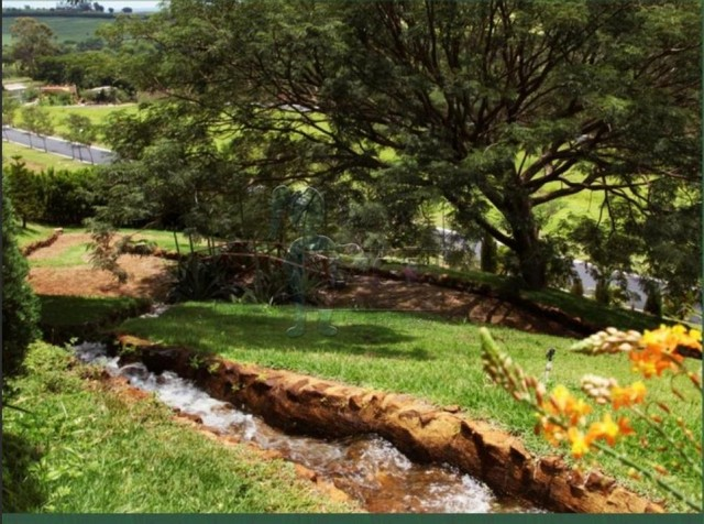 Terreno à venda em Centro, Ribeirao preto cod:V129653 - Foto 6