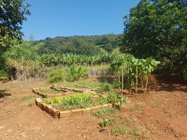 Fazenda/Sítio/Chácara para venda tem 1100000 metros quadrados - Foto 18