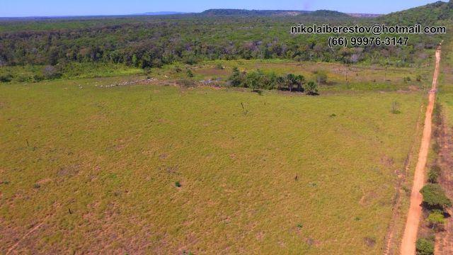 Fazenda 1.540 hectares nordeste mt nikolaiimoveis