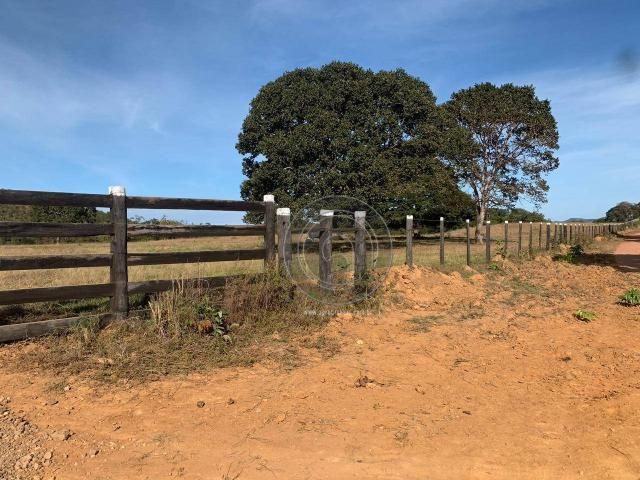 Fazenda 1.050ha região rosario oeste (cedral) - Foto 4