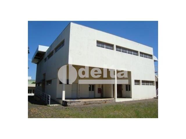 Galpão/depósito/armazém para alugar em Santa mônica, Uberlândia cod:532515 - Foto 3