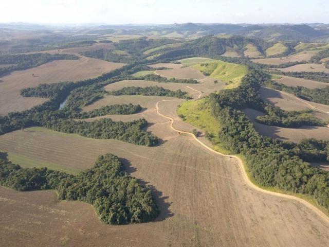 Vendo fazenda 350 alqueires em arapoti-pr - Foto 4