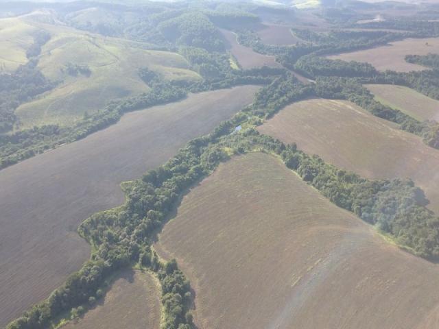 Vendo fazenda 350 alqueires em arapoti-pr - Foto 5